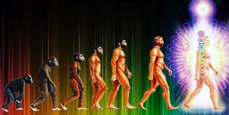 rekonekcija-evolucija